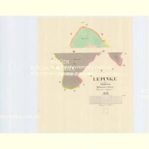 Lepinke - m1565-1-002 - Kaiserpflichtexemplar der Landkarten des stabilen Katasters