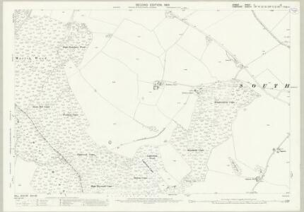 Dorset X.15 (includes: Cranborne; Damerham; Martin) - 25 Inch Map