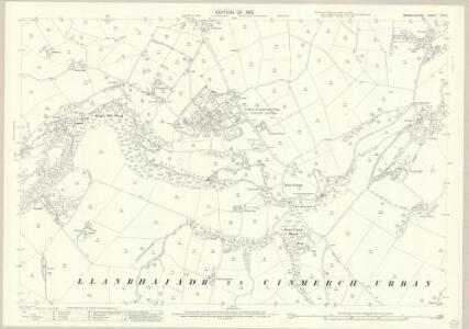 Denbighshire XIII.8 (includes: Denbigh; Henllan; Llanrhaeadr Yng Nghinmeirch Urban) - 25 Inch Map